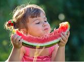 DGE-Qualitätsstandards der Pari proJob GmbH in Kinderkrippen, Kindergärten und Kindertagesstätten